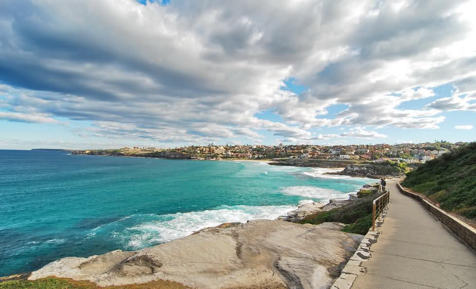 Sydney's best dog-friendly walks