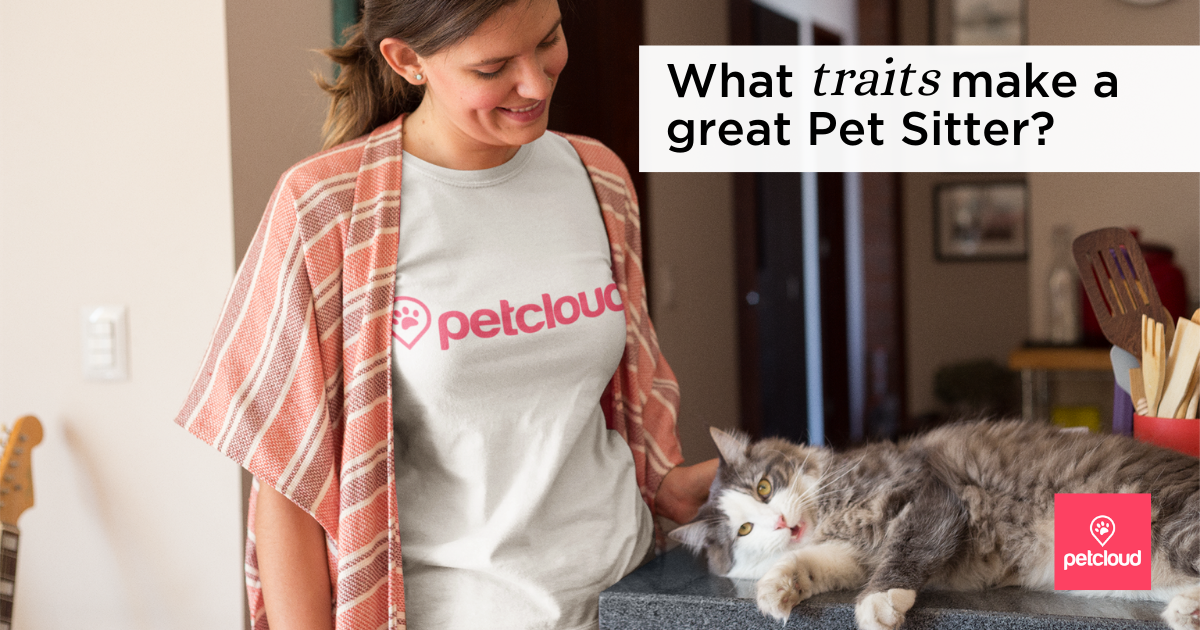 What traits make a great Pet Sitter?