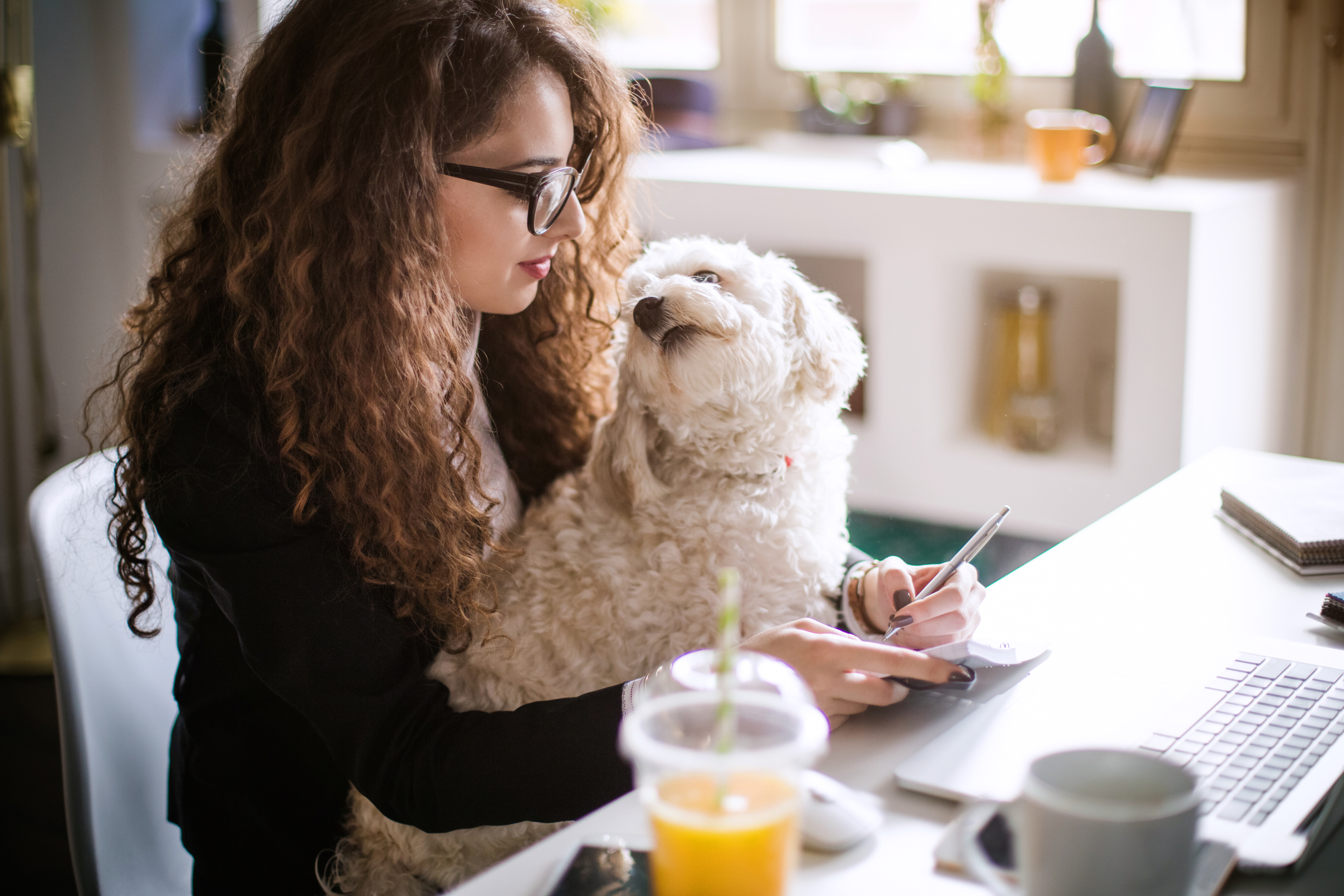 Take Your Dog to Work Day Tips and Health Benefits
