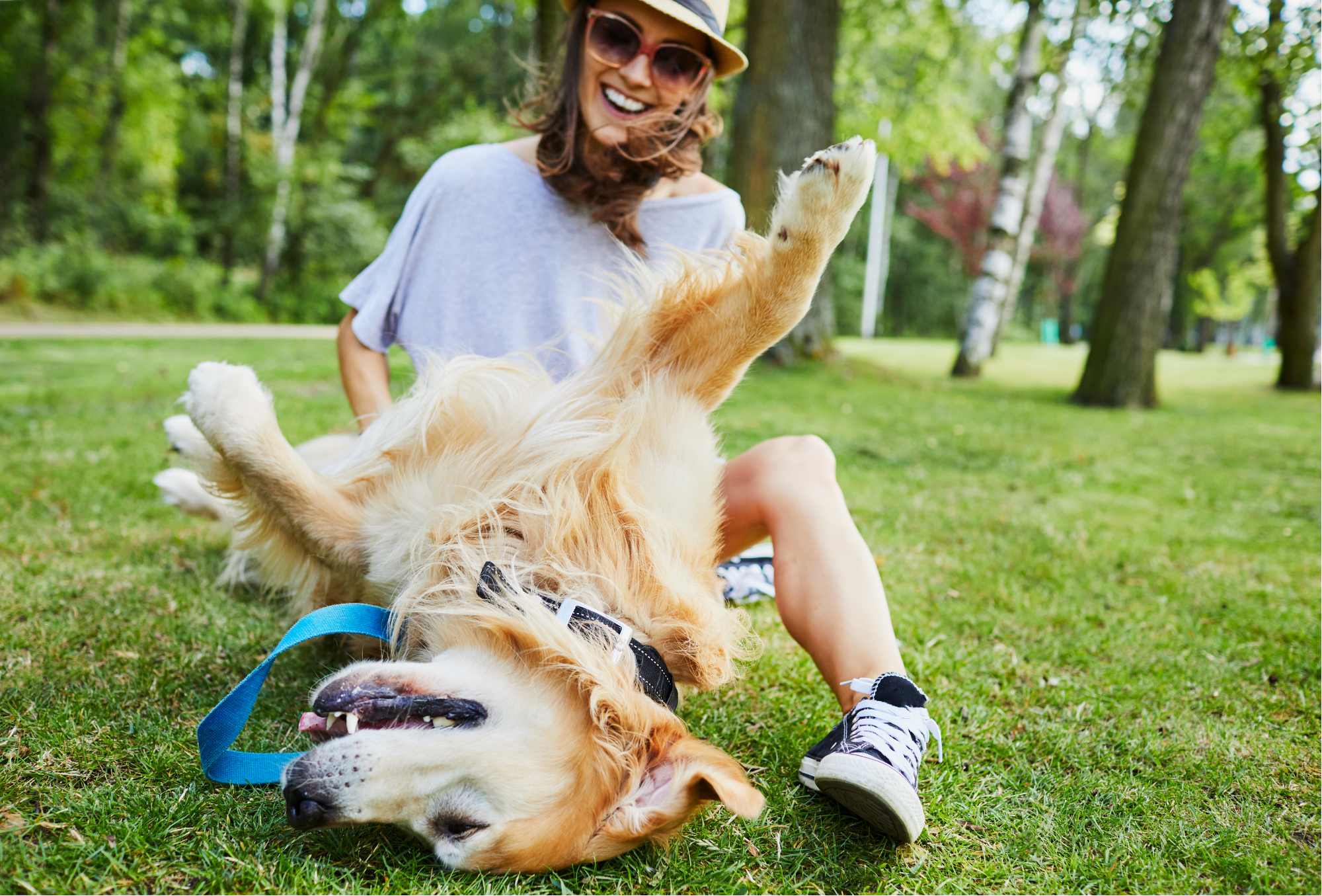 10 Amazing Health Benefits of Owning a Pet