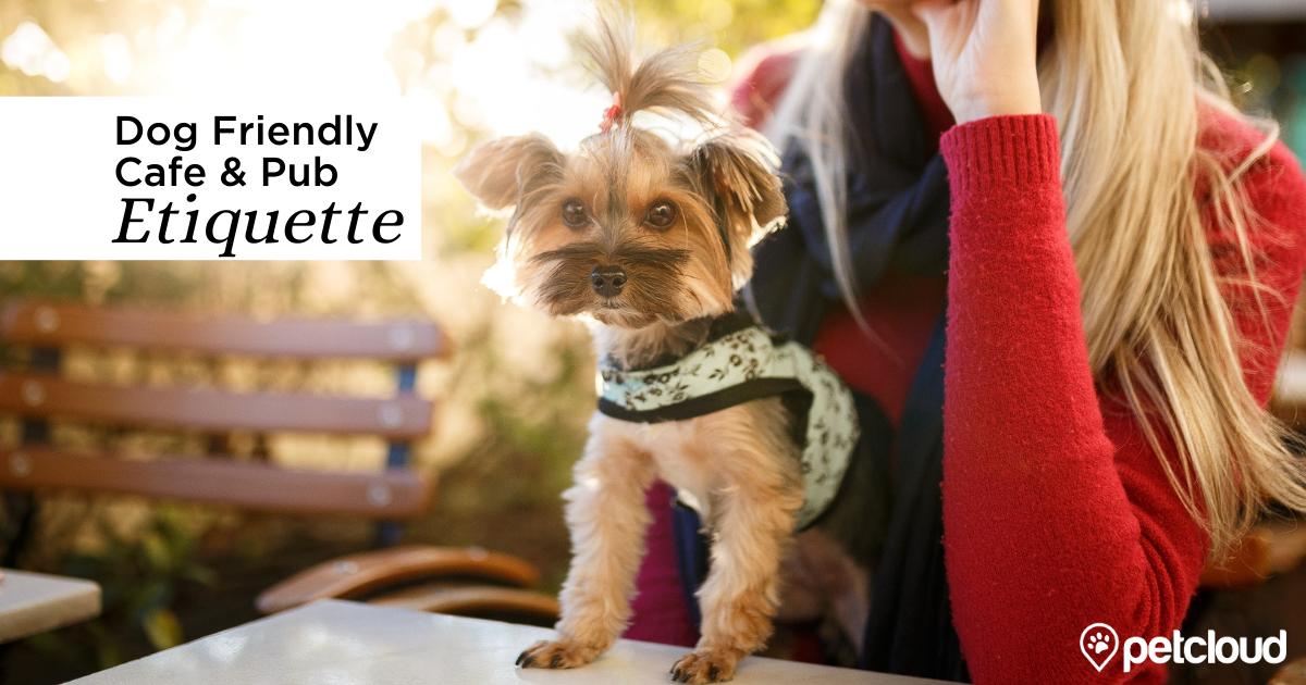 Dog Friendly Café & Pub Etiquette