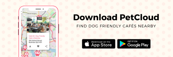 This image has an empty alt attribute; its file name is Dog-Friendly-Cafes-Banner.png