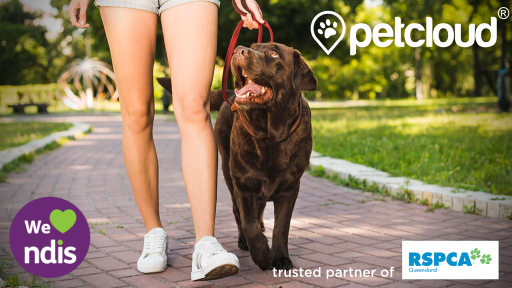 NDIS Pet Care, PetCloud, Pets, Assistance with Personal Domestic Duties