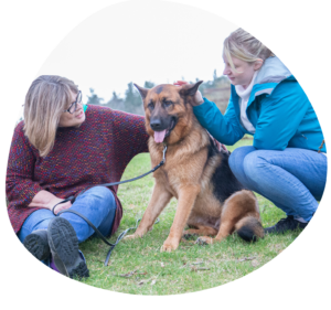 PetCloud's Dog Walkers will happily accompany NDIS Pet Owner Participants to the Dog Park