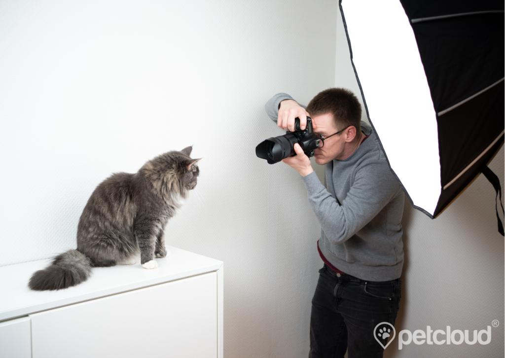 Pet Jobs with PetCloud you can get Pet Photographer Jobs