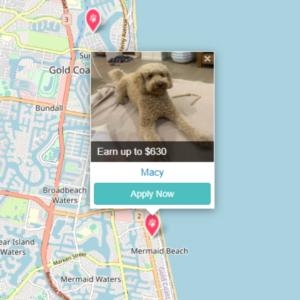 Pet Jobs on the Gold Coast with PetCloud