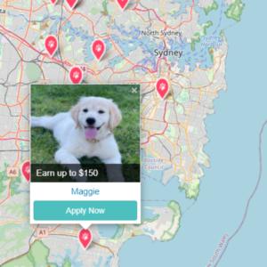 Pet Jobs in Sydney on the PetCloud Pet Jobs board