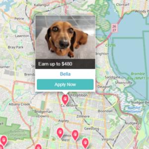 PetCloud has Pet Jobs in Brisbane Qld