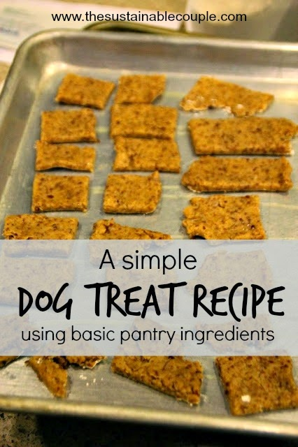 Homemade Dog Treat Recipe blog article image