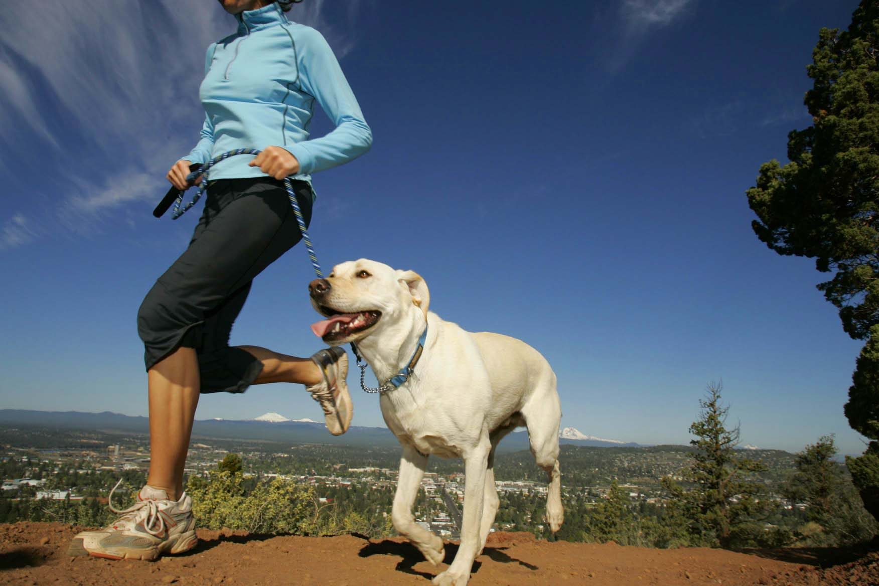 Helping more Australians get fit blog article image