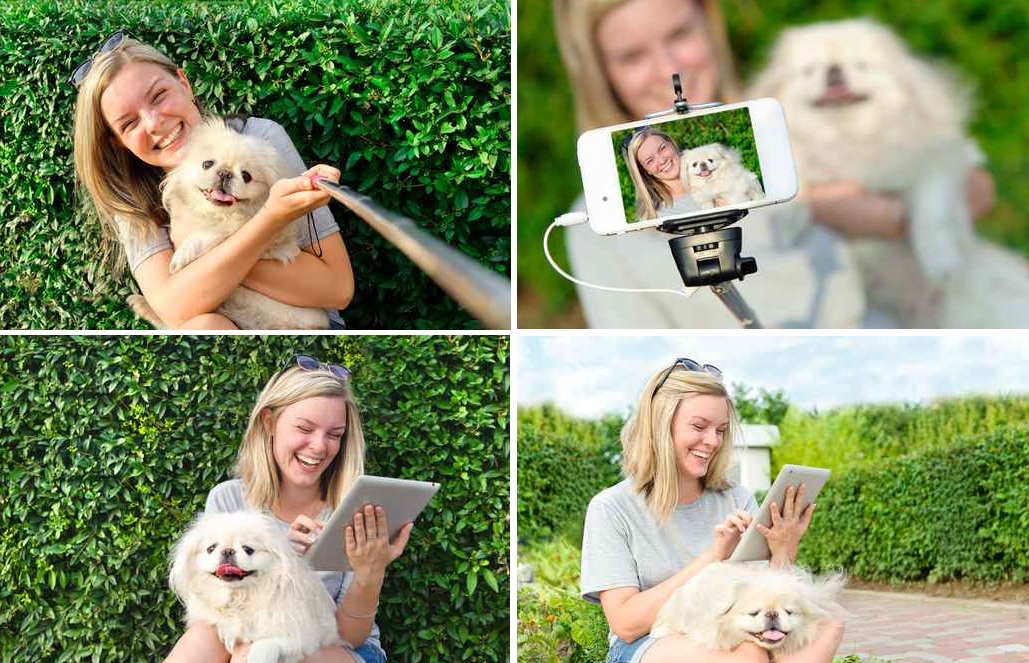 Pet Sitters - How to take the ultimate Pet Selfie