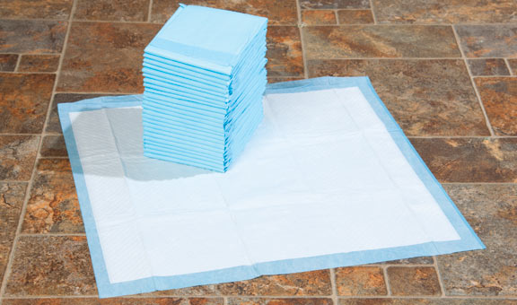 Get prepared for your first pet sitting booking with paper towels and puppy training pads