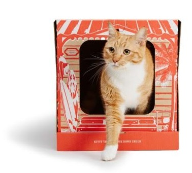 Get prepared for first pet sitting booking with cats and have disposable cat litter trays on hand from poopycat