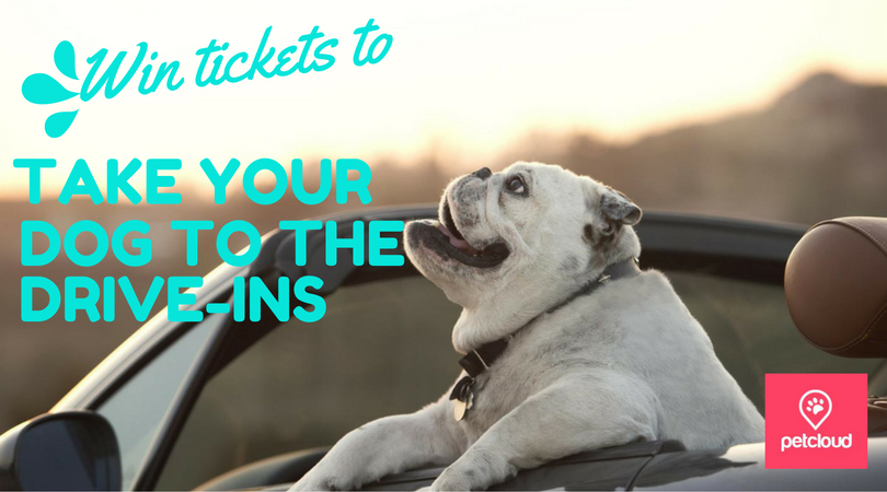 WIN Tickets to take your dog to the Drive-In