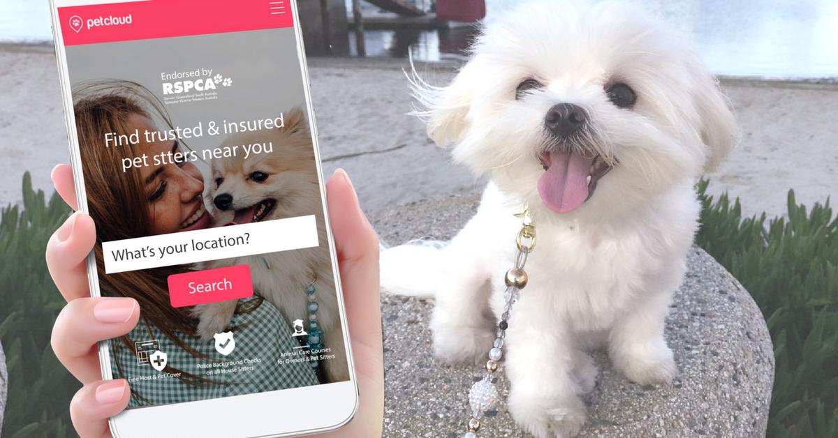 Use a Pet Sitting Service Website