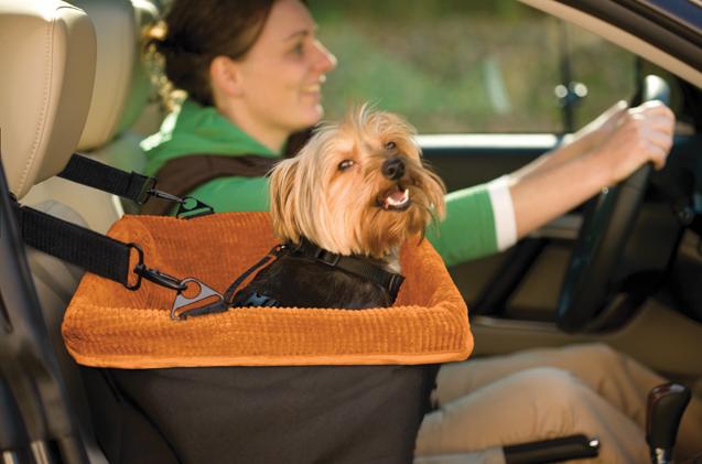 PetCloud Pet Taxi Service