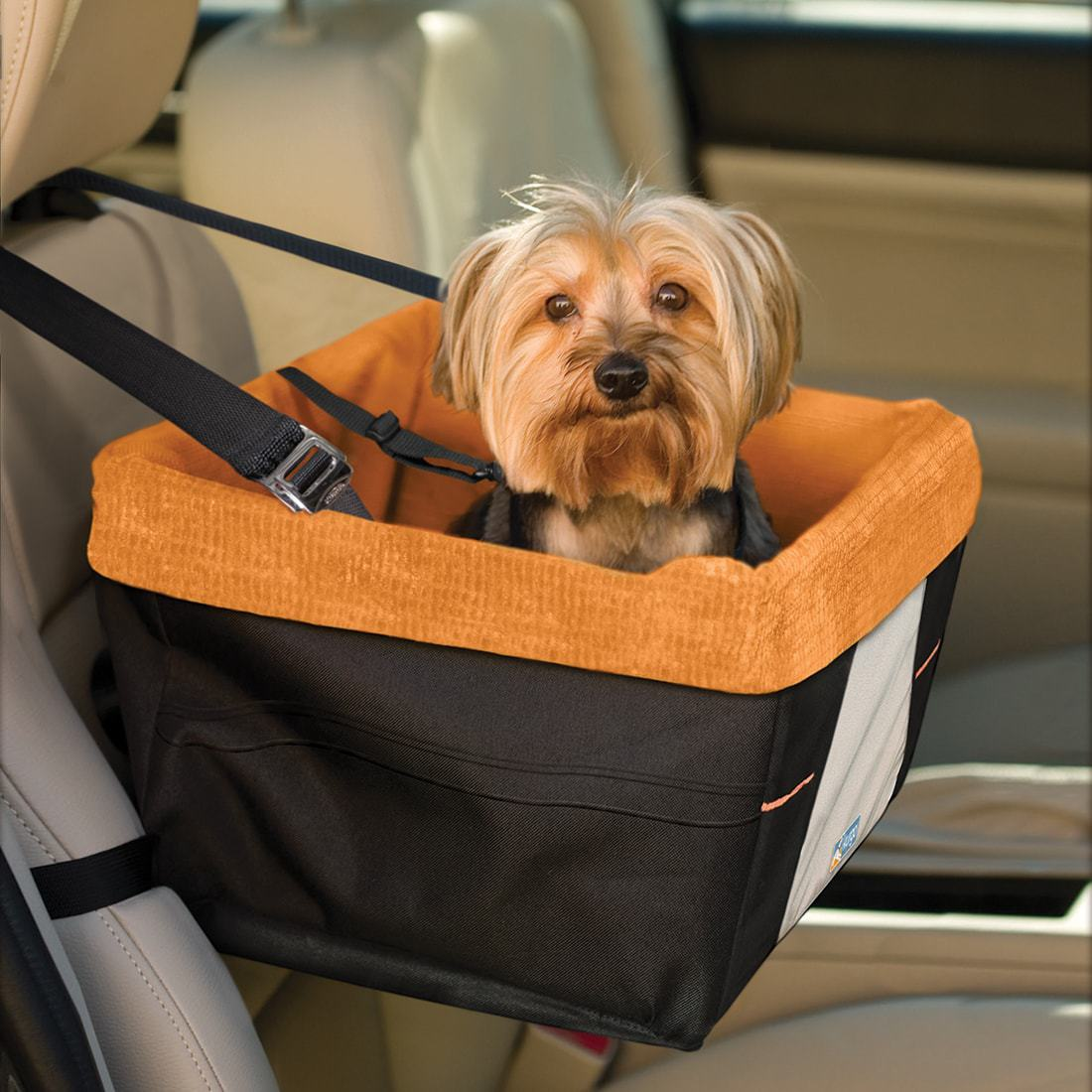 Dog Car Booster Seat Skybox