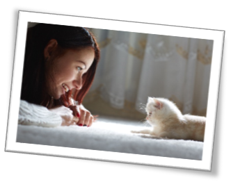 Picture of Cat Pet Owner