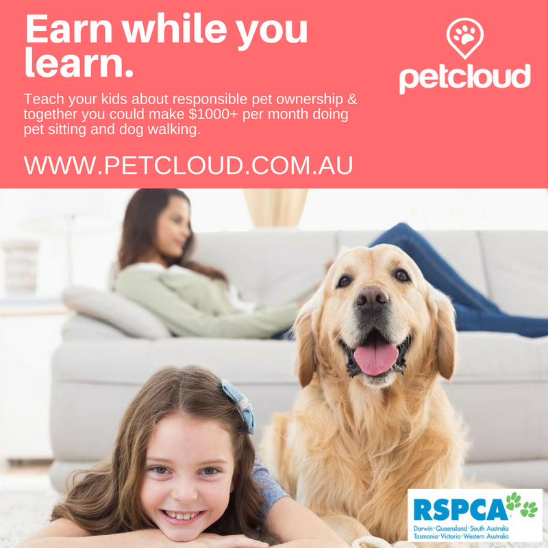 Earn while you learn PetCloud Schools Initiative
