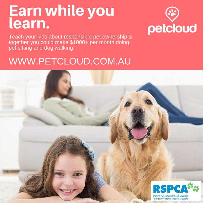Earn while you learn PetCloud Schools Initiative
