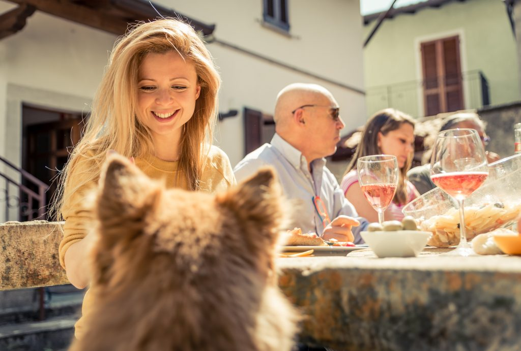 Happy Pet Owner feeding Dog at the table at a family get together
