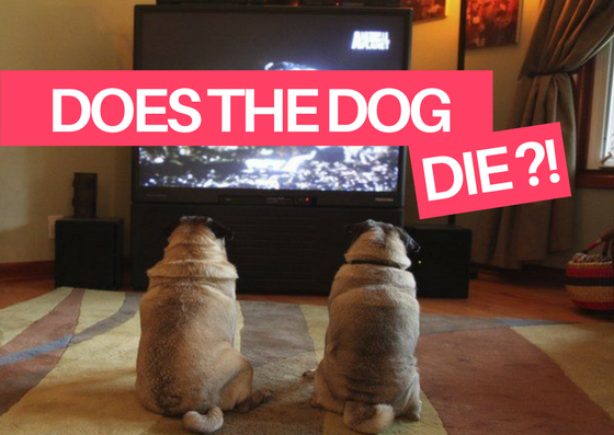 Does the dog die in the movie blog article image
