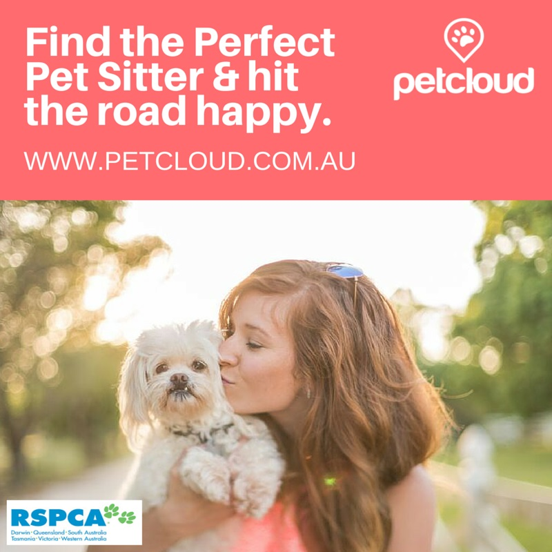 Find the Perfect Pet Sitter & hit the road happy