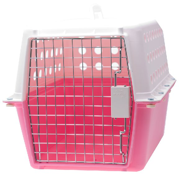 Have a pet carrier for transportation and temporary housing
