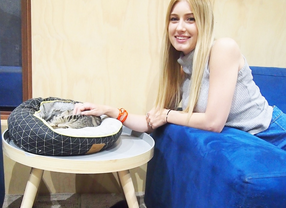 Perth Cat Cafe with Hannah from PetCloud