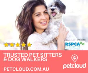 Find a PetCloud Pet Sitter near you