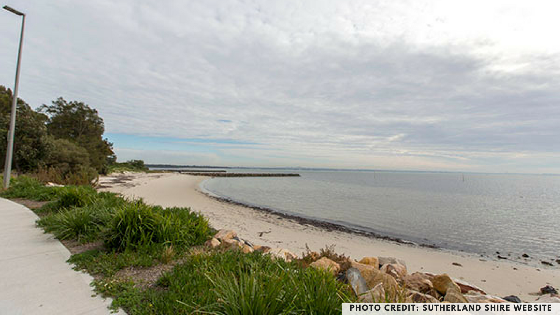 Bonna Point Reserve, Silver Beach, Kurnell, Sydney, dog friendly parks, dog parks, petcloud