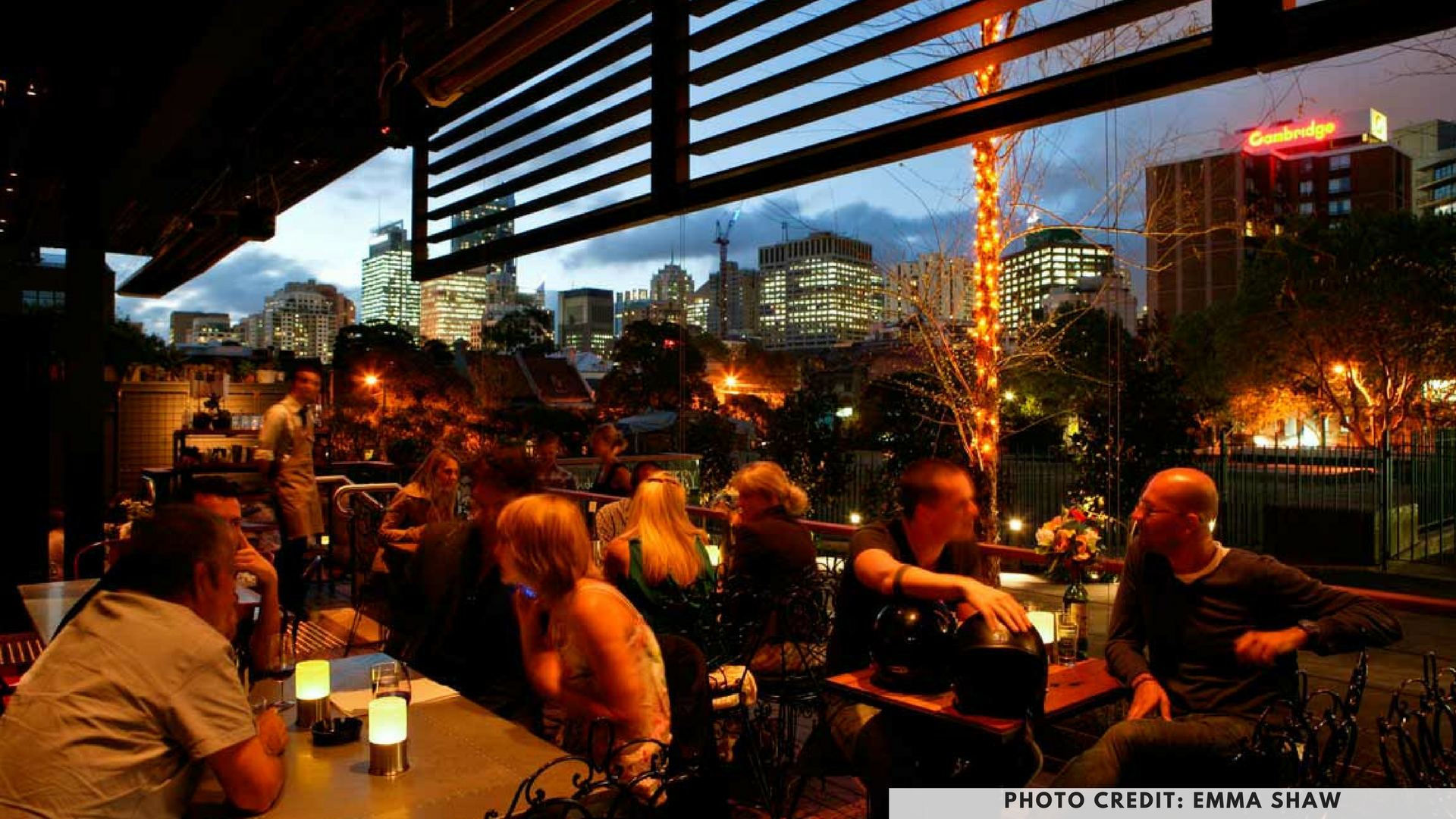 The Winery, Surry Hills, Sydney, dog friendly cafes, dog friendly pubs, dog cafes, dog pubs, petcloud