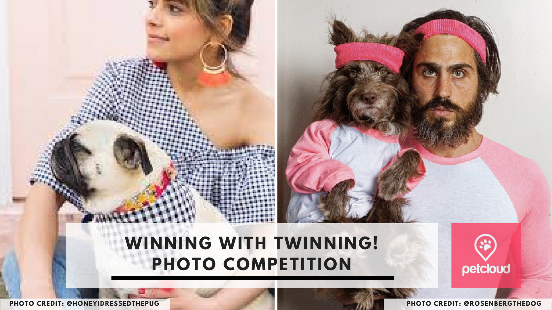 twinning, @rosenbergthedog, @honeyidressedthepug, photo competition, petcloud, win, prize, giveaway, dog photos, cat photos, Zoo Studio Photogrpahy blog article image