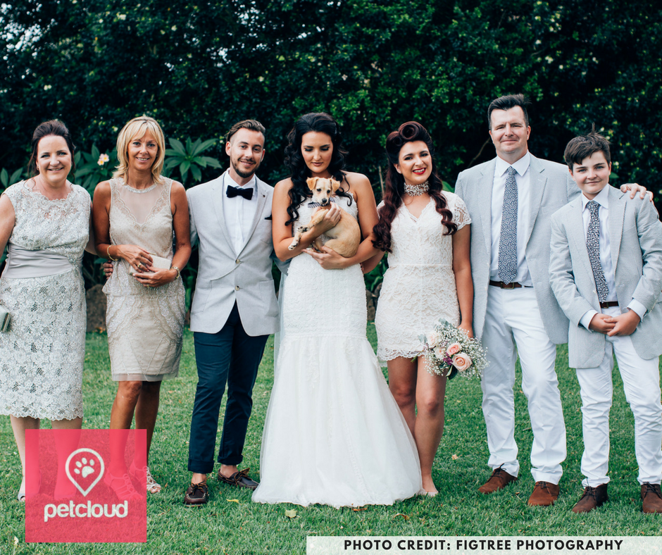 figtree photography, pets at weddings, dogs at wedding, dog-friendly wedding, fig tree restaurant, Byron Bay