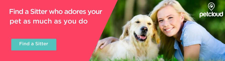 Find a sitter on PetCloud