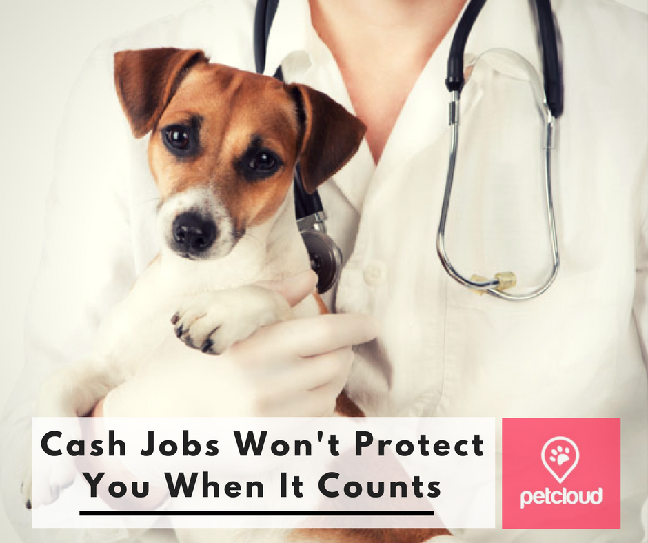 Cash Jobs Won't Protect You When It Counts blog article image