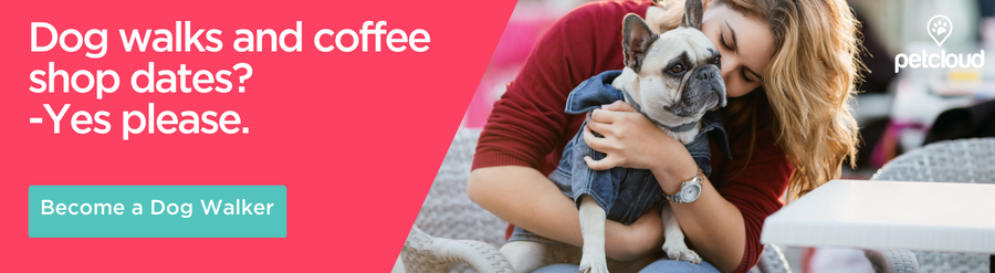 Dog Walks and coffee shop dates - become a Pet Sitter in Melbourne with PetCloud