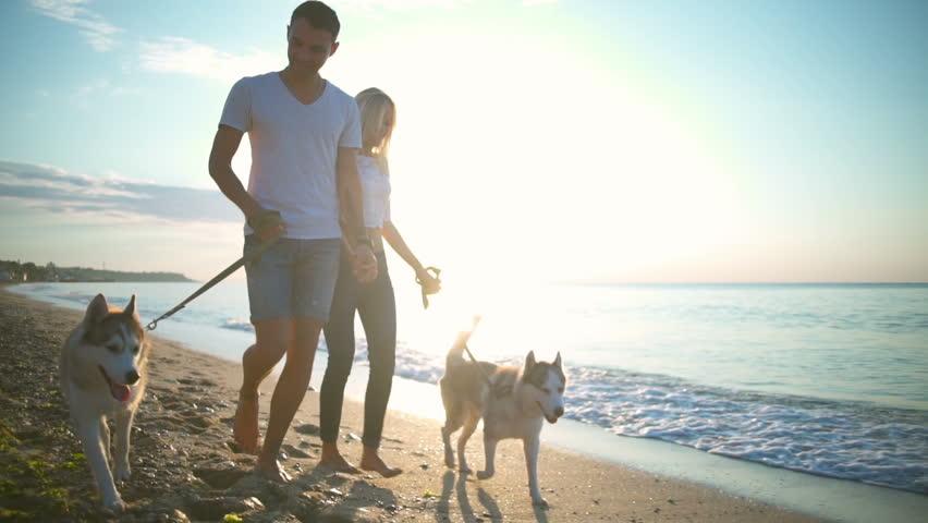 Couple walking dogs on dog friendly beach in Australia