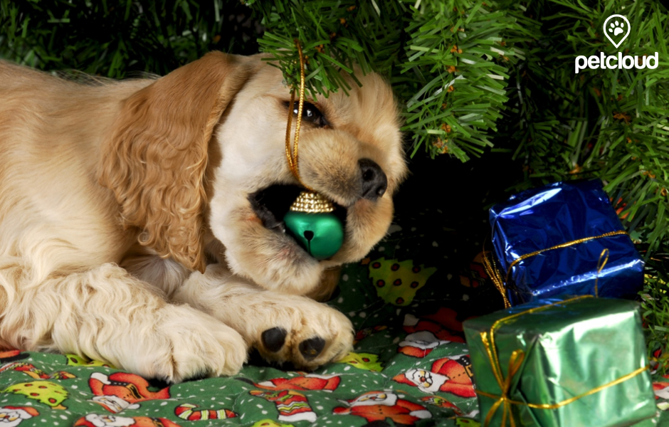 Puppy Eating Christmas Tree Ornaments