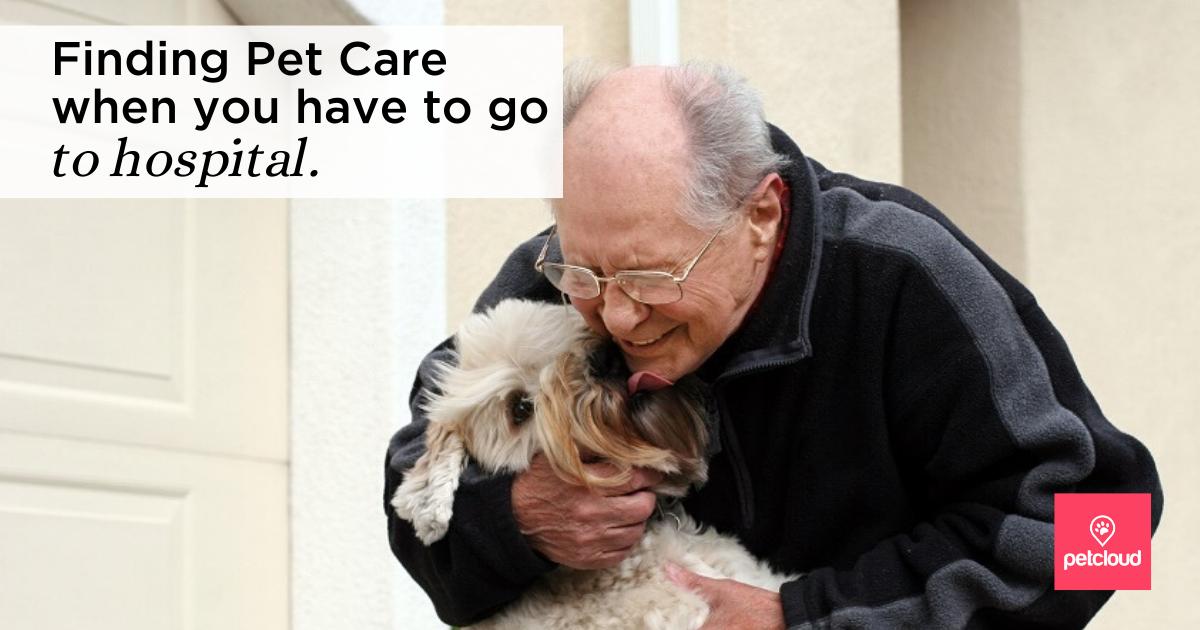 A Senior Pet Owner in Hospital