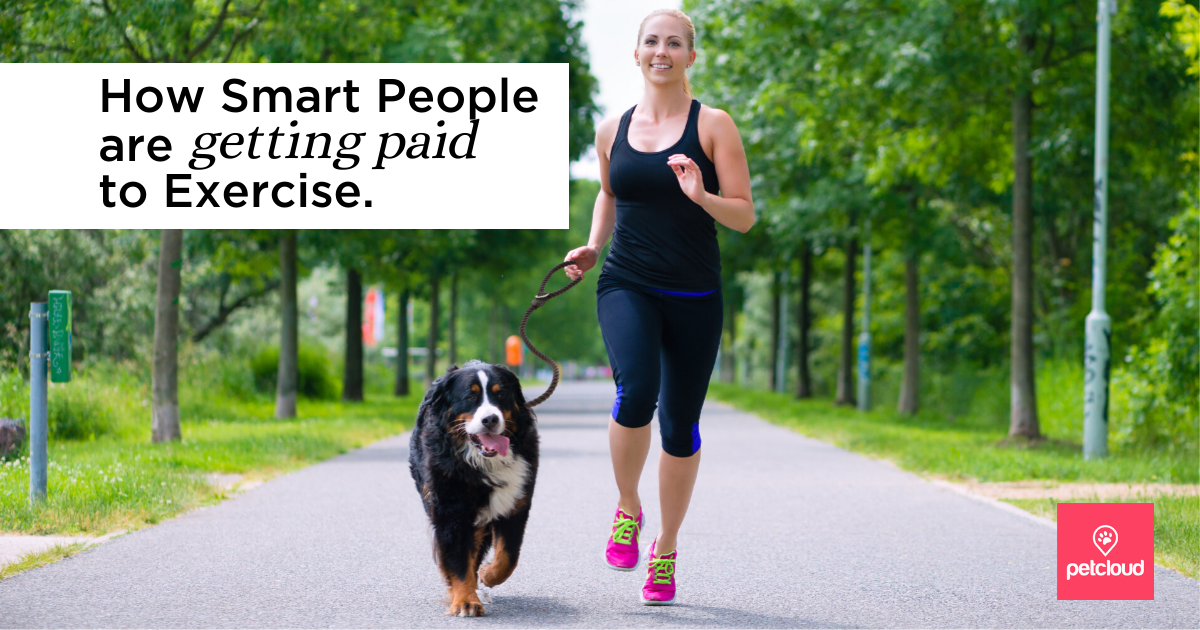 woman exercising with a Dog blog article image