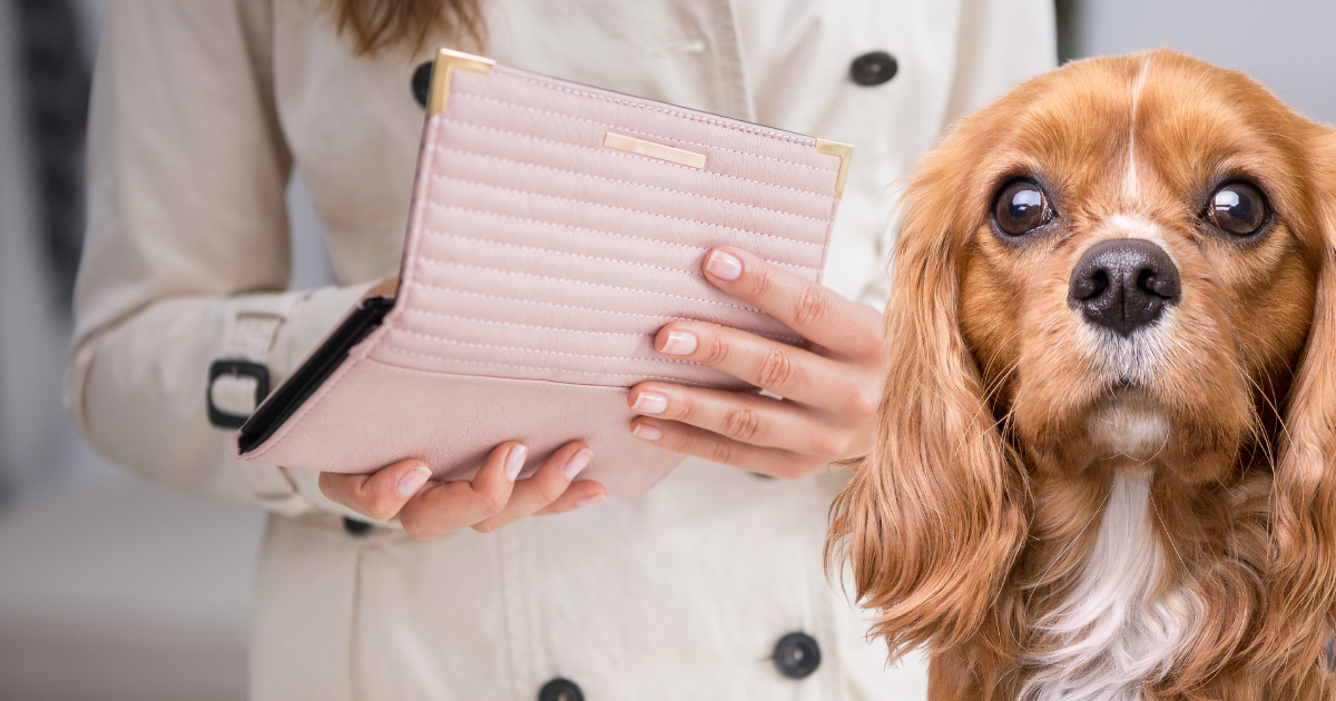 Woman looking into wallet with dog in the foreground