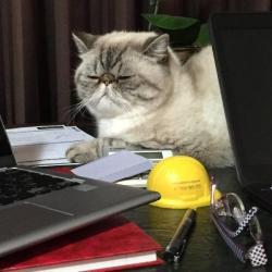 Past PetCloud client
