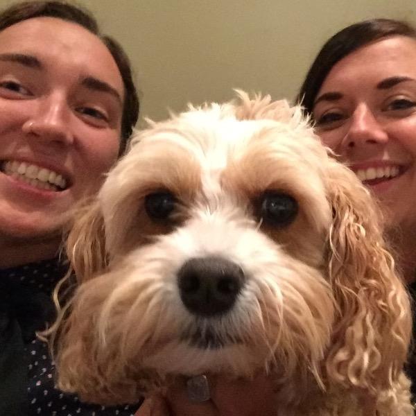 Pet Sitter Review