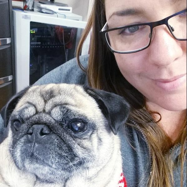 Pet Sitter Review