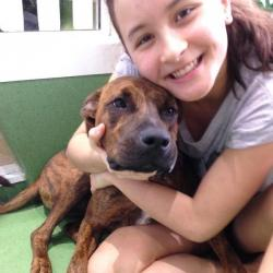 Check up on your dogs by Isobel! | Kirribilli, NSW | PetCloud