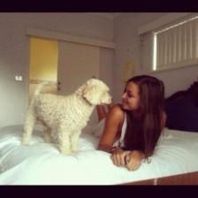 Dog Training Banyule